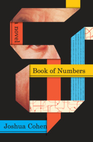 cover image for Book of Numbers