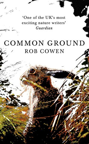 cover image for Common Ground