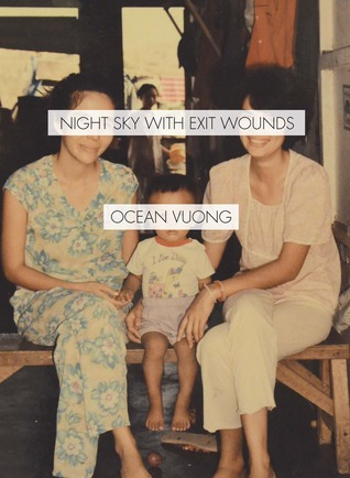 cover image for Night Sky with Exit Wounds
