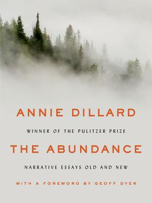cover image for The Abundance