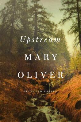 cover image for Upstream